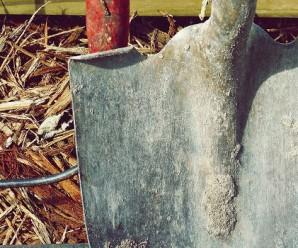 narzedzia-ogrodnicze-szpadel